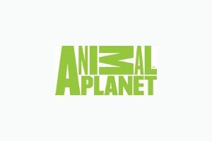 Animal Planet logo