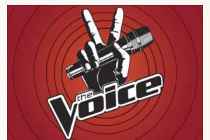voice logo