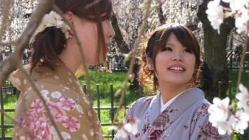 The Tsunami and the Cherry Blossom
