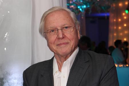 Sir David Attenborough. Photo courtesy of Sky