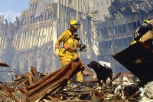 Hero dogs of 9-11