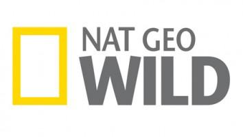 Nat Geo Wild
