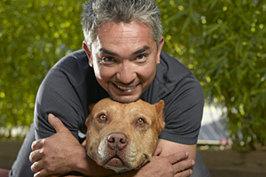 Dog Whisperer with Cesar Millan