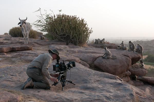 "Barrie Britton films BBC series ""Survival"""