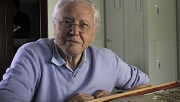 David Attenborough's Rise of Animals: Triumph of the Vertebrates