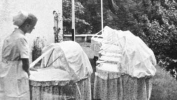 The Nazi Nurseries
