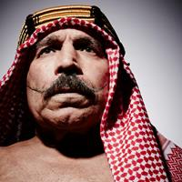 Copied from Playback - The Sheik