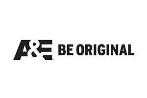 A&E 2014 logo