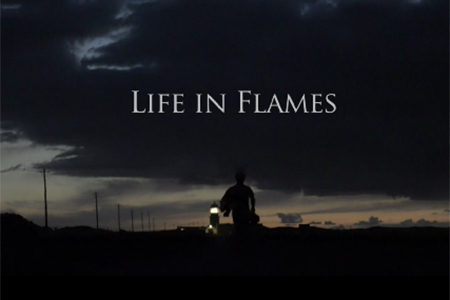 Life in Flames