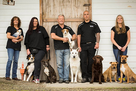 Pound Pups