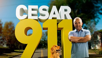 Cesar 911