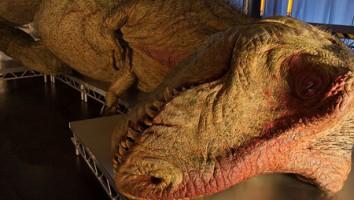T Rex Autopsy