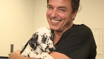 Pet Hospital with John Barrowman