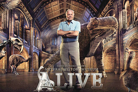 Natural-History-Museum-Alive