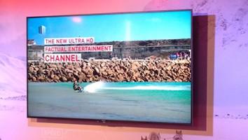 tern tv