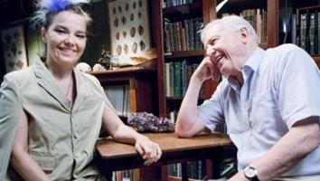 When Bjork Met Attenborough