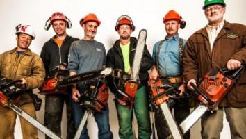 Timber Kings 2 - Copy
