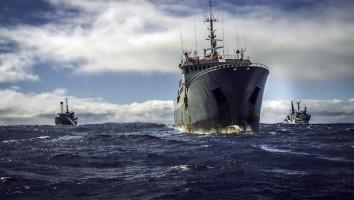 Ocean Warriors