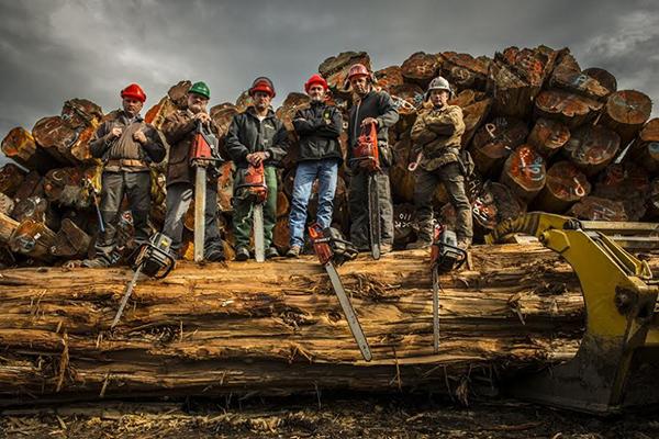 Timber Kings