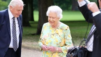 Queen's Canopy Image