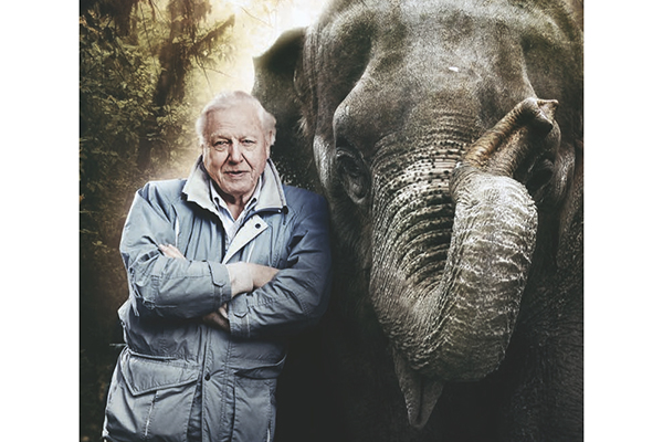 Sir David and Elephant
