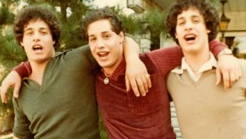 Three Identitcal Strangers
