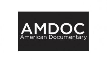 AmDoc