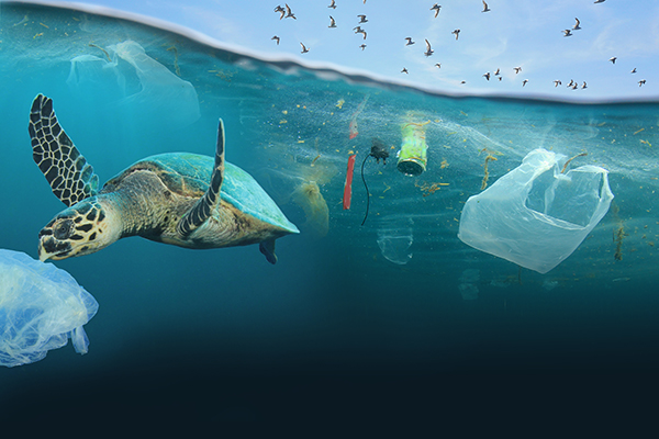 Drowning in Plastic Image 1