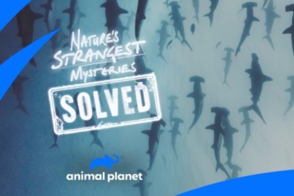 Nature's Strangest Mysteries
