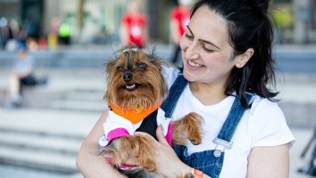 Best Dog Day Ever