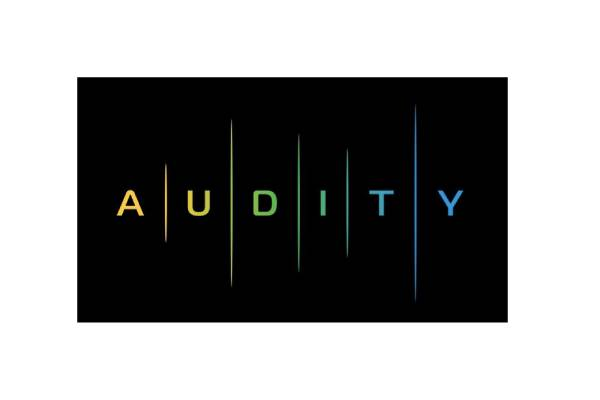 Audity logo (3) (1)