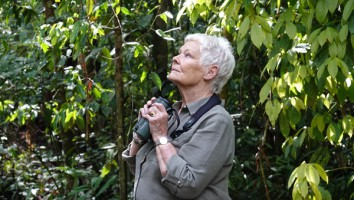 Judi Dench's Wild Borneo Adventures