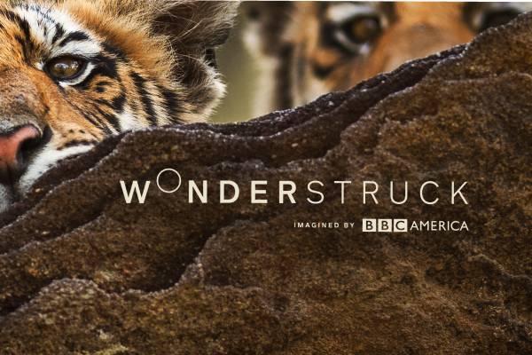 Wonderstruck_logo (2)