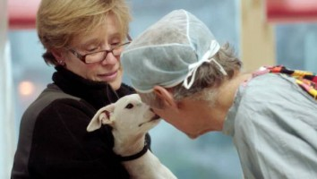 The Dog Doc Gets a Kiss (1)
