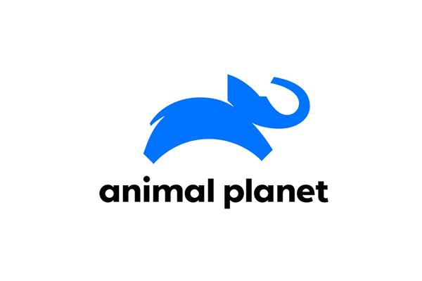 Animal-Planet