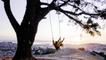 Tree-Swing (1)